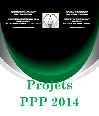Selected projects for public and private partnerships for 2014
