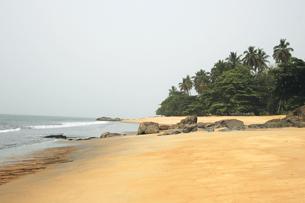 Atlantic coast of Cameroon