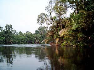 Congo Bbrazzaville tourisme