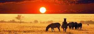 SOUTH SUDAN TOURISM